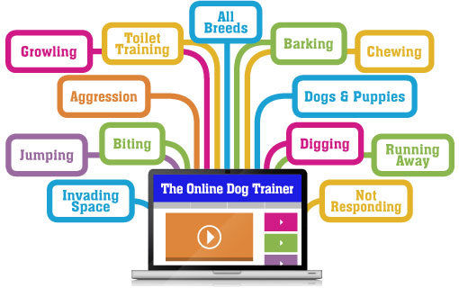 The Online Dog Trainer login details